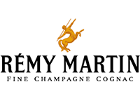 BizHack Academy instructors and coaches are all experienced digital marketing practitioners who have worked at top corporations and businesses including Remy Martin
